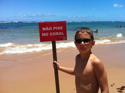 Não pise nos coral
