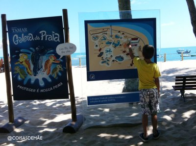 Projeto Tamar na Praia do Forte - Bahia