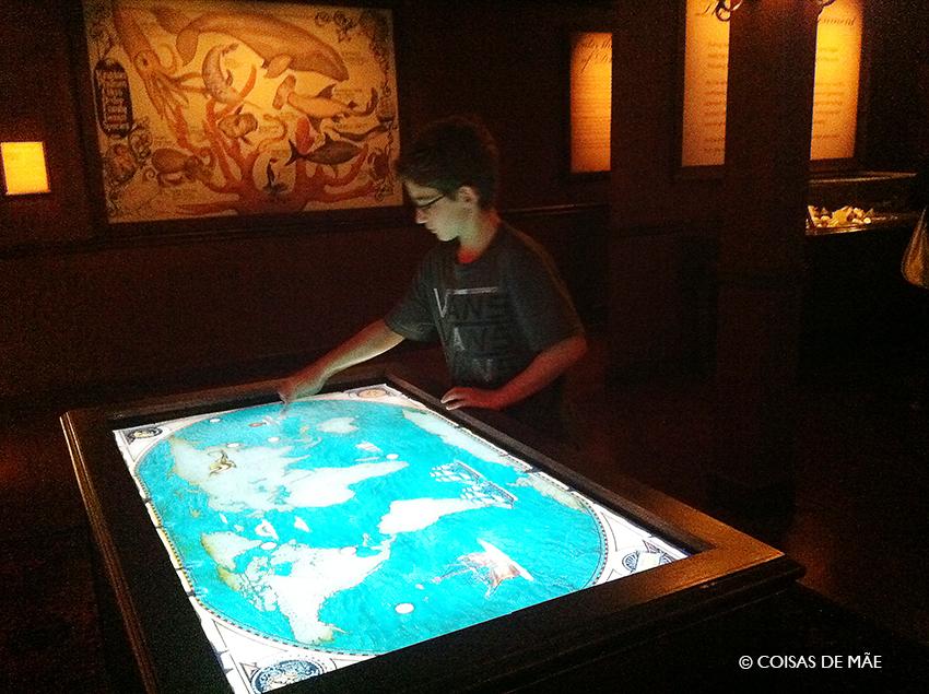 Brincadeiras interativas no aquário